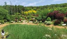 象耳山公园