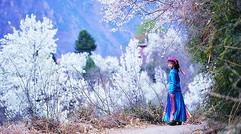 3月四姑娘山丹巴藏寨金川梨花休閑攝影