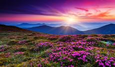 灯光在冷漠之夜上 刻花,从石头里
