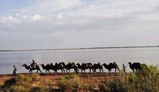 红崖山水库建造在河西走廊东北部,被称作亚洲最大的人工沙漠水库