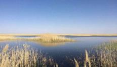 亚洲最大沙漠水库甘肃红崖山水库扩容保生态