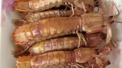 美味皮皮虾大螃蟹