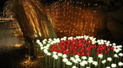 農業科技展覽園