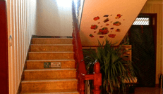 情谊居民俗客栈干净的楼梯环境