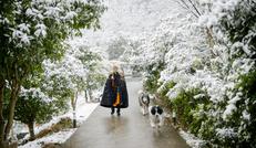 美丽的江南雪景