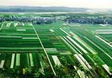 重庆四区入选首批国家农村产业融合发展示范园