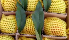精心包装,优质水果!