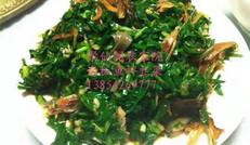 鱼拌   韭菜