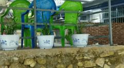 竹海农庄欢迎您