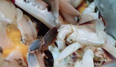 新鲜的小螃蟹