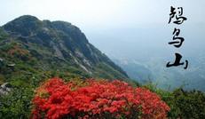杭州鸬鸟山