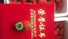 優質大草莓
