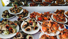 现捞现煮,体验海边农家院的乐趣