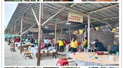深圳企业团建适合年轻人玩的地方-万荔生态园